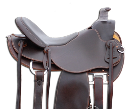 chestnut freemotion saddle